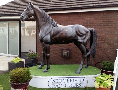 Sedgefield Racecourse